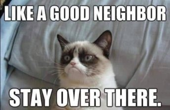 mvslim_good neighbour